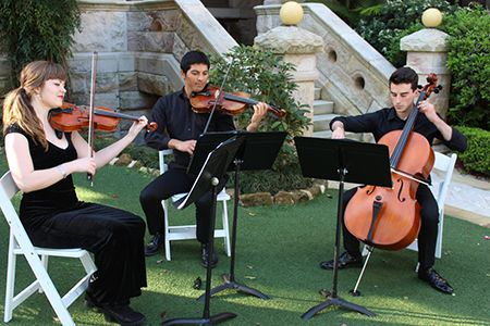 String Quartets, Trios & Duos for Hire Sydney